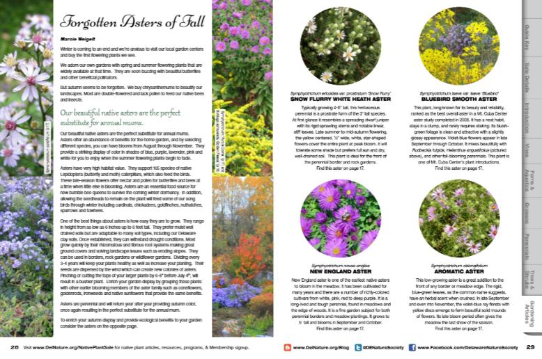 Native Plant Sale Catalogue Article