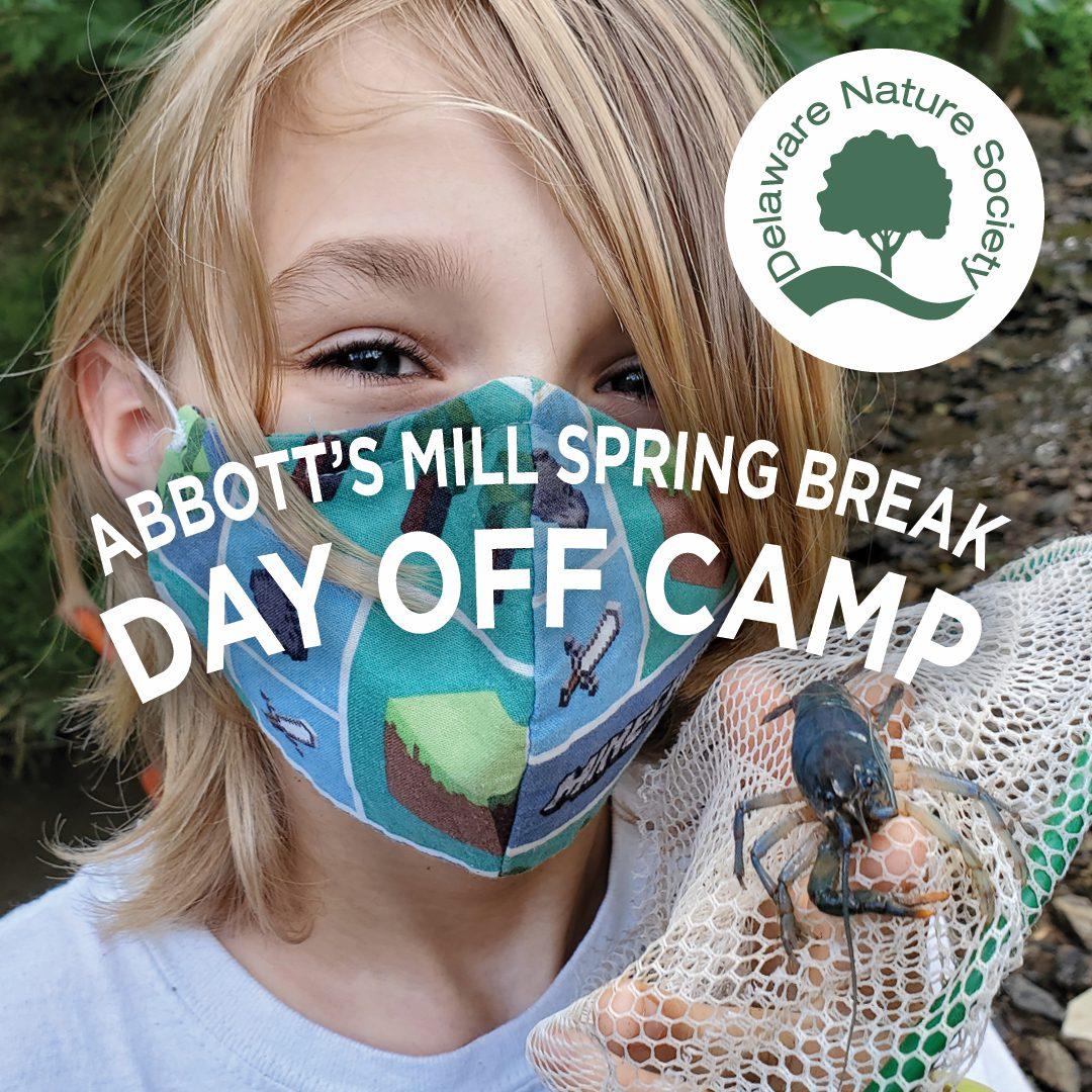 Spring Break Facebook Ad