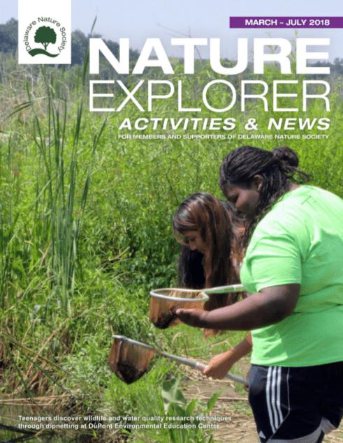 Nature Explorer Activites and News